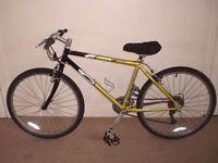 "Carrera Gryphon 17"" Mountain Bike"