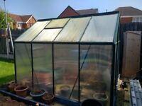 Greenhouse 6 x 8 polycarbonate, exc cond
