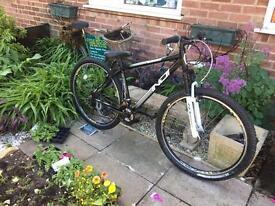 Indi Release 29er Bike