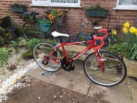 Apollo Tempo Child's Road Bike