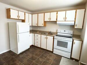 6a Densmores Ln-Newly renovated Above Ground 2 bedrms apt