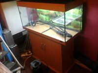 Fish tank, stand and external filter