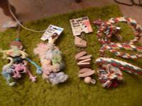 bundle of new parrot toys bird toys
