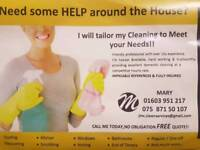 ** DOMESTIC CLEANER **