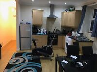 1 Bedroom flat in shared flat