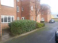 Office's to Let 750 sqft /Free Parking/ RENT NOW REDUCED