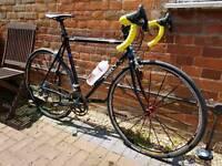 Surly Pacer 55cm medium road bike campagnolo record mavic
