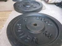 2x 15kg cast iron plates