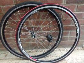 Road/Racing bike wheels including Shimano R500