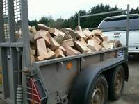 Big load of seasoned hardwood logs 850 logs premium hardwood logs