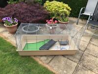 Guinea Rabbit Cage
