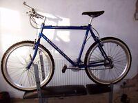 extra large mans mountain bike
