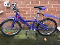Child's Giant bike