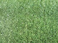 Artificial grass. New never laid 8'x21'.