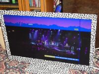 """Baird 24"""" Full HD LED TV with DVD in leopard print with remote."""