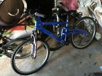 Apollo Endeavour ladies mountain bike