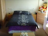 Double ensuite room, generous storage,all bills+fiber internet included