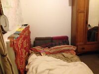 Cosy room in lovely flat over christmas