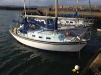 Seadog 30 Sailing Yacht/Boat/Cruiser