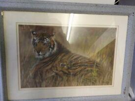 Tiger and cub print