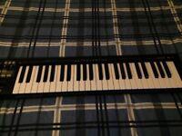 Roland A-49 USB MIDI Controller Black Keyboard (49 Keys)