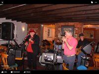Blue Dog Blues and rock band