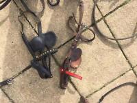 horse driving equipment