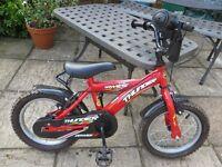 Dawes Thunder Child's Bike