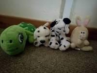 Selection of teddies