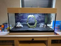 Askoll XL Pure - 94L - Beautiful Silent Aquarium + Spare Fish Tank + All Accessories x 2