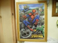 SPIDERMAN POSTER FULL SIZE IN 3D IN GLASS FRAME CAN DELIVER