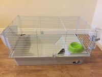 Guinea Pig and Young Rabbit Cage