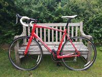 Specialized Allez C2 13 road bike 2013 model size XXL aluminium frame