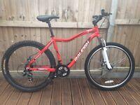Raleigh trail mens mountain bike
