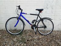 Raleigh Resonator adult bike (off road style)