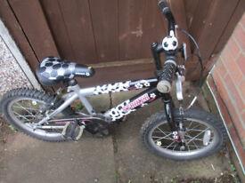 Raleigh Striker boys bike