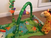 Fisher Price baby playmat