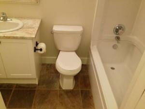 FULLY RENOVATED 2 BD 2 BATH APT! STEPS TO QUEEN'S- 432 UNION ST Kingston Kingston Area image 13