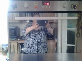 Intergrated electric oven and gas hob