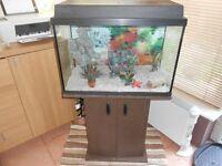 Juwel Aquarium 70 Litre & Stand. Extras included