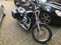 Pristine Harley Davidson 1200 XL sportster for sale