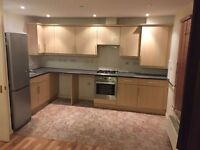 Very nice and clean 2 bedroom flat in Chadweel Heath