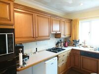 Kitchen Cabinets with Solid Oak Doors