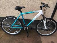 Ladies twilight mountain bike