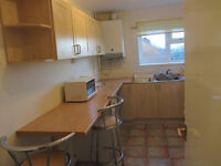 Lovely Double room £200 per mth Flat share Sketty, Swansea