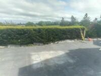 Armagh garden fencing and domestic fencing and gates