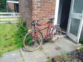 Mens retro road bike, randonneur, l'erocia 70's/80's touring/commuting road bike