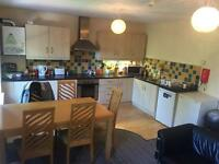 2 Large double rooms in bright city centre apartment - fantastic location!!