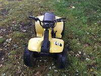 Suzuki lt50 child's quad