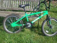 Raleigh BMX boys bike